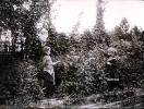 Альбом Сиверская 1902 (15)