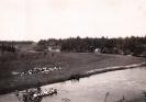 Сиверская 1902